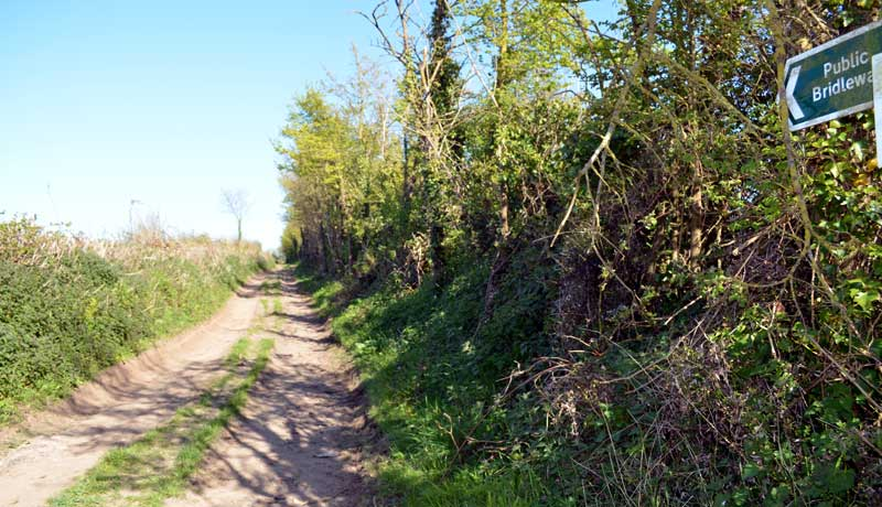 Public Bridleway at Muddlebridge House